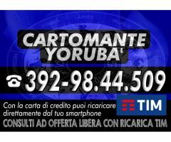.•*°*•.✰*°¨°º•. CARTOMANTE YORUBA'  .•*°*•.✰*°¨°º•.