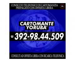 cercami sul sito http://ilcartomanteyoruba.altervista.org